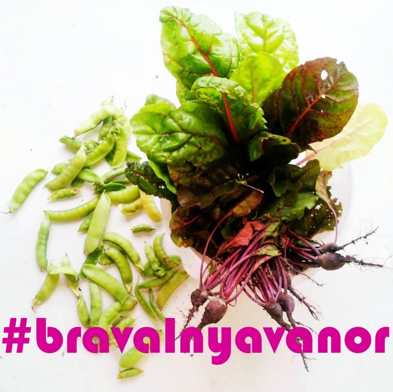 bra val nya vanor #bravalnyavanor