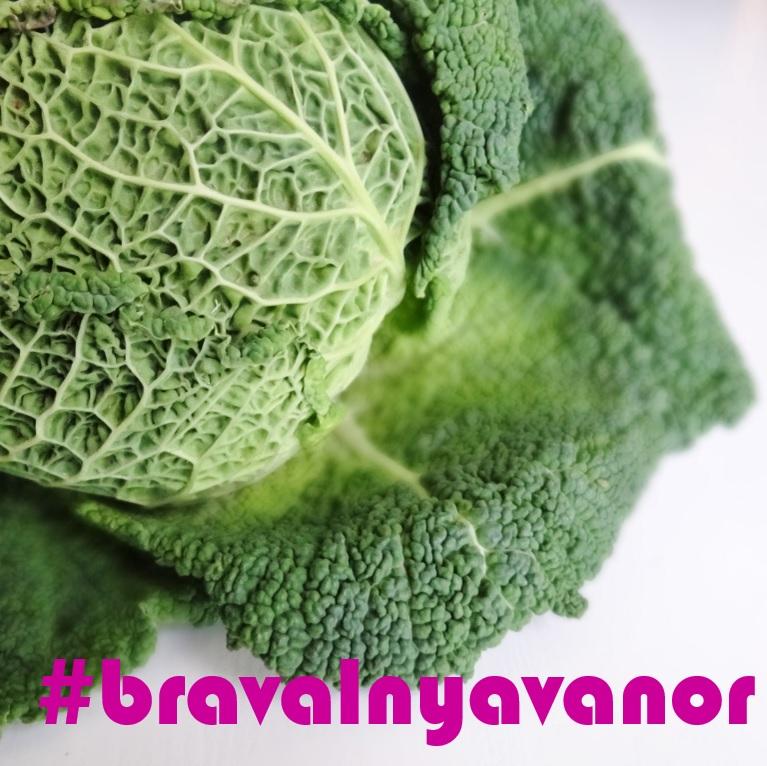 jeann aullén, #bravalnyavanor